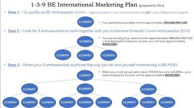 BE International Marketing Plan