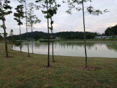 Man made pond